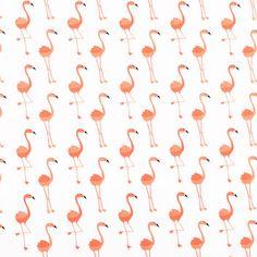 Flamingo Apparel Fabric