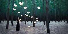 exterior_forest_03.jpg