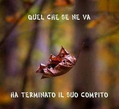 he has completed its task Italian Phrases, Italian Quotes, Motivational Messages, Inspirational Quotes, Hr Humor, Love Quates, Favorite Quotes, Best Quotes, Something To Remember