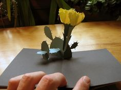 Cactus Flower - Pop-up Card - pattern in previous pin Flower Pop Up Card, Pop Up Flowers, Amazing Flowers, Paper Flowers, Arte Pop Up, Pop Up Art, Kirigami Patterns, Pop Art Patterns, Tarjetas Pop Up
