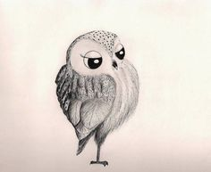 Adorable fancy drawing of an owl!