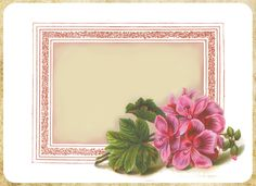 Summery Pink Geraniums ~ free printable note card