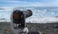 La formation d'un iceberg filmée au Groenland :http://www.wikilinks.fr/la-formation-dun-iceberg-filmee-au-groenland/