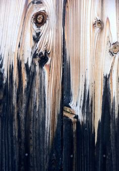 1000 Images About Wood Textures On Pinterest Wood