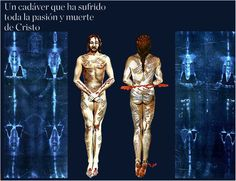 """The """"blood belt"""" of Christ on the Shroud of Turin"""