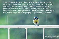 14 Quotes Every Animal Advocate Should Know By Heart
