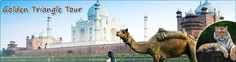 Known as impeccable tour services, Exotic India Journey offers you Golden Triangle Tour package to make your India holiday amazing. Get your best over here! http://www.exoticindiajourney.com/golden-triangle-tour.html