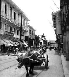 Slow but sure, on Calle Rosario, Manila, Philippines, early Century Philippines Culture, Manila Philippines, Philippine Architecture, Jose Rizal, Filipino Culture, Chinese Culture, Philippine Art, Asia, Historical Architecture