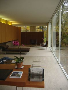 Farnsworth Interior