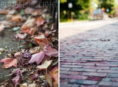 what beautiful autumn photos from @Rebecca Nichols of bumbles & light. love the composition and the purple hue in the cobblestones.