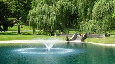 Salt Lake City, Present Day, Cemetery, Fairy Tales, Golf Courses, Irish, Waterfall, Studio, Summer