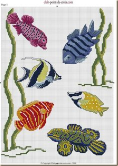 CROSS STITCH PATTERN FISH