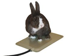 K Heated Resting Mat for Small Animals, 9 By 12 Inches