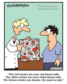 """""""The red circles are your red blood cells. The white circles are your white blood cells. The brown circles are donuts. We need to talk."""""""