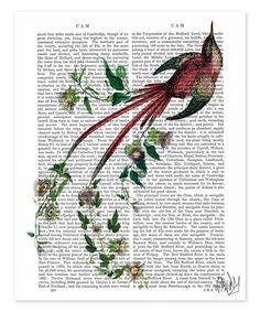 Passion Flower Bird Dictionary Print by FabFunky #zulily #zulilyfinds