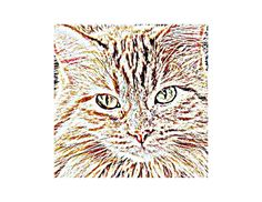 Ginger Cat Art Print Wall Art Gift for Cat Lover by WhimZingers