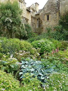 Kiftsgate Court. It's a magical place and a must visit if you are in the area. The garden is on the side of the valley and is spectacular.