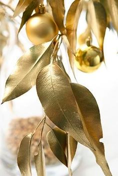 Painting leaves & gum nuts in a metallic gold/ silver/ cooper or matte white for Christmas decorations