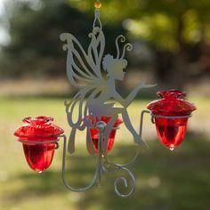 Colibrí: Trucos para atraer colibríes, picaflor, chupa rosa - Foro de InfoJardín