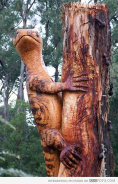 My neighbour carved this out of a tree using a chainsaw a few years ago. Chain Saw Art, Tree Carving, Scouts, Got Wood, Wood Tree, Tree Sculpture, Wooden Art, Made Of Wood, Tree Art