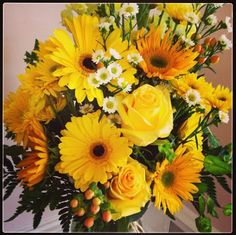 Thanks @RESCUE! Pest Control Products for sunny, gorgeous flowers!  #gardenmediaturns25