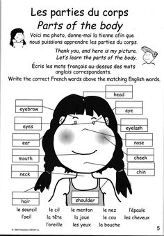 French parts of the body printable: the face, worksheet with word bank.