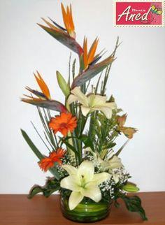 Lilies, ave del paraiso y gerberas Pedidos 1703320 Cel 656 2779106