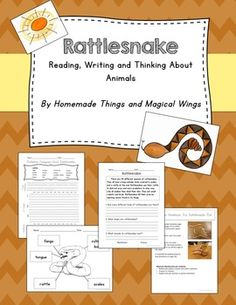 Rattlesnakes: Reading, Writing and Thinking About Animals    We have found that the most effective way to get students to write is to dangle an adorable animal in front of them. Our rattlesnake unit includes a question and answer comprehension, sheltered writing, free-response writing, graphic organizers, an art project and much more.