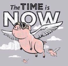 Yes the pigs are flying and yes its time to join Scentsy:  http://ukwicklessscents.scentsy.co.uk/join