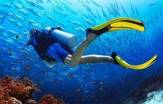 Best Dive Watches Under $500 in 2020 (TOP 6 MODELS)