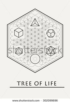 Sacred geometry - tree of life - flower of life - platonic solids - yantra - stock vector - stock vector