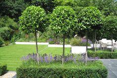 Slate Terrace Contemporary Garden | Contemporary Gardens | Gardens | Garden Design London |
