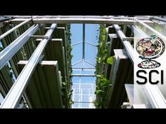 World's Largest Indoor Vertical Farm – Producing 2 Million Pounds Of Food   HIGH T3CH