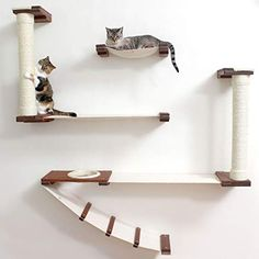 CatastrophiCreations Roman Cat Fort for Cats Multiple-Level Wall Mounted Scratch, Hammock Lounge, Play & Climbing Activity Center Furniture Cat Tree Shelves - Pets Cat Playground, Playground Design, Cat Climbing Wall, Cat Climbing Shelves, Cat Wall Shelves, Cat Bedroom, Space Fabric, Cat Hammock, Cat Furniture