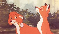 Tod and Vixey (The Fox and the Hound) (c) 1981 Richard Rich & Walt Disney Animation Studios Disney Couples, Cute Anime Couples, Old Disney, Disney Love, Arte Disney, Disney Magic, Disney And Dreamworks, Disney Pixar, Disney Colors