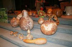Drying Gourds!