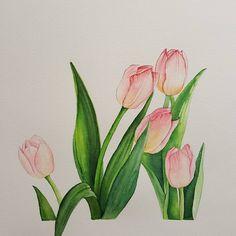 Plant Illustration, Watercolor Illustration, Plant Painting, Painting & Drawing, Watercolor Flowers, Watercolor Paintings, Easy Paintings, Botanical Art, Art Inspo