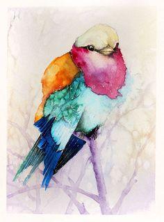 Watercolor Birds Portraits – Fubiz Media