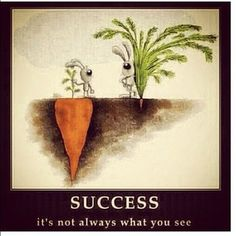 Success is not always what you see.