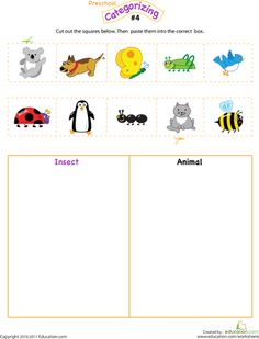 Worksheets: Cut and Categorize #4 insects and animals---could use with creation day 6 too