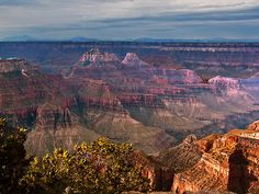 grand canyon north rim | Linda Sparks › Portfolio › Grand Canyon North Rim, AZ