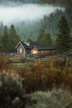 cabin near the woods