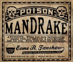 Potion Bottle Labels Halloween Witch Poison by chocolaterabbit
