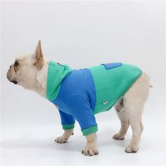 9b7718f188ce Frenchie World Skate Dog Hoodie. Check out French Bulldog hoodies and  clothing at our website