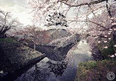 Castle in Spring. Japan. Hirosaki Castle © Glenn E Waters.