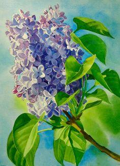 Lavender Lilacs, Art Reproduction Watercolor Print 8.5 x 11 on Etsy, $15.00