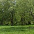 Eğirdir, Isparta'da Milli Park