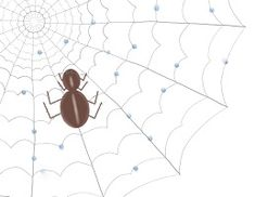 """Today's Moral of the Story is """"It is always good to be aware of the date"""" from the story """"Sammy Spider"""""""