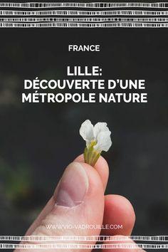 Lille: découverte d'une métropole nature - Vio Vadrouille Restaurant Bio, Travel List, Nature, Inspiration, Urban Farmhouse, France Travel, Tops, Biblical Inspiration, Naturaleza
