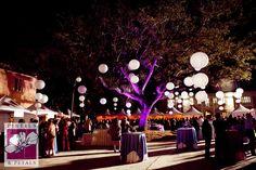 Corporate Event Tree Decor & Lighting by Pistils & Petals  https://www.facebook.com/PistilsAndPetals  https://www.PistilsAndPetals.com